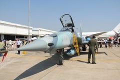 F-5E Tiger  fighter. BANGKOK - JANUARY 14 : F-5E tiger  at Don Muang Airshow, January 14, 2012, Don Muang Airport, Bangkok, Thailand Stock Photos