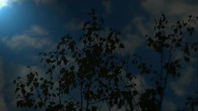 100f 2 8 28 301 ai照相机夜间f影片fujichrome nikon s夏天velvia 股票视频