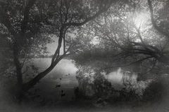 100f 2 8 28 al 301 kamera wieczorem f fujichrome nikon s leci film velvia Obraz Royalty Free