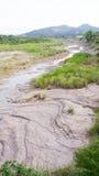 Fã aluvial Imagens de Stock