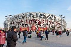 fågeln 2008 spelar olympic s stadion för huvudrede Arkivfoto