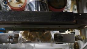 F?brica de la carne Línea de embalaje de productos finales M?quina del acondicionamiento de los alimentos Industria de la carne T almacen de metraje de vídeo