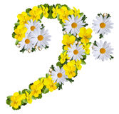 F clef. Made of daisies and yellow violets isolated on white royalty free stock photography
