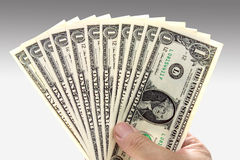 Fã do dinheiro Imagens de Stock Royalty Free