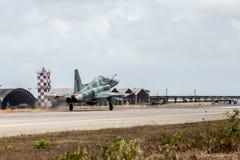 F-5EM TIGER II des TOLLEN Cruzex in Kraft stockbilder