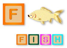 F Is For Fish. Text with sliced apple Royalty Free Stock Images