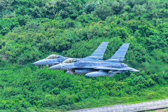 2 of f16 fly Stock Photo