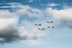 F-18 Hornet squadron formation Royalty Free Stock Image