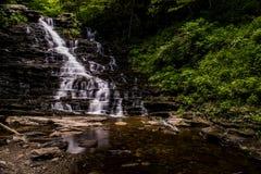 f L Ricketts cai - Ricketts Glen State Park - Pensilvânia fotografia de stock royalty free