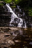 f L Ricketts fällt - Ricketts Glen State Park - Pennsylvania lizenzfreie stockfotos