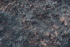 F?ljder som l?mnar brand efter brinnande gr?s arkivfoto