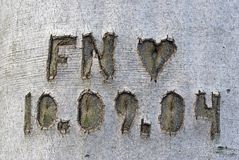 F and N Stock Photo