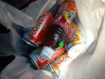 F&N tempera o chá do pêssego embalado na garrafa e nas latas Imagem de Stock Royalty Free