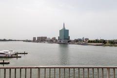 F?nf Kaurischnecke-Nebenfluss Lagos Nigeria lizenzfreie stockfotografie