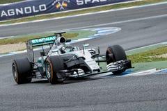 F1: Nico Rosberg lag Mercedes Royaltyfri Bild