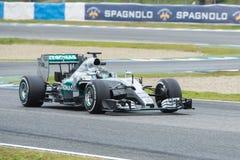 F1: Nico Rosberg lag Mercedes Arkivbild