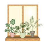 F?nster med tropiska houseplants i krukor vektor illustrationer