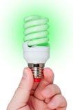 för lamplampa för energi grönt sparande Fotografering för Bildbyråer