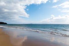 f?r kanarief?gellanzarote f?r strand tropiskt h?rligt hav panorama kanarief?glar royaltyfri fotografi