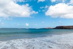 f?r kanarief?gellanzarote f?r strand tropiskt h?rligt hav panorama kanarief?glar arkivbild