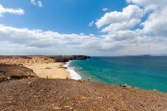 f?r kanarief?gellanzarote f?r strand tropiskt h?rligt hav panorama kanarief?glar royaltyfri bild