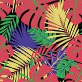 F?r sidavektor f?r sommar tropisk design seamless blom- modell Klottervektorbakgrund med sidor stock illustrationer