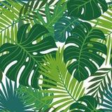 F?r sidavektor f?r sommar tropisk design seamless blom- modell Klottervektorbakgrund med sidor vektor illustrationer