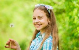 f?r sommarterritorium f?r katya krasnodar semester E r Maskros V?rferie kvinnors dag naturlig sk?nhet fotografering för bildbyråer