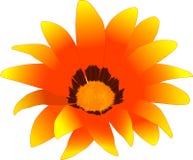 f rasterize czerwonego kwiatu żółty Zdjęcie Royalty Free
