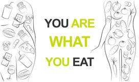 F?rdig kvinna som ?ter sund gr?n gr?nsakmat eller den feta flickan som ?ter snabbmat Banta eller äta sjuklig problemfråga vektor illustrationer