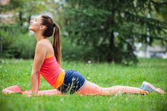 F?rdig ?vande yoga f?r ung kvinna i stad parkerar arkivfoton