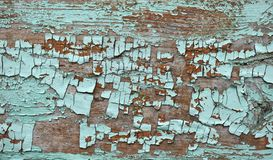 F?rgad kn?ckt m?larf?rgskalning f?r smaragd skugga p? wood textur royaltyfria foton