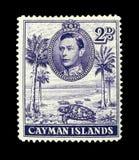 F?rgglade Cayman?arna portost?mplar royaltyfria bilder