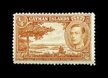 F?rgglade Cayman?arna portost?mplar arkivbilder