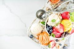 F?rgrik frukt- och b?rglass arkivbilder