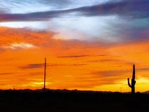 F?rgrik solnedg?ng i Arizona royaltyfri bild