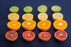 F?rgrika citrusfrukter, apelsiner, blodapelsin, limefrukt och citron arkivbilder