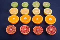 F?rgrika citrusfrukter, apelsiner, blodapelsin, limefrukt och citron royaltyfri foto