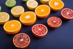 F?rgrika citrusfrukter, apelsiner, blodapelsin, limefrukt och citron royaltyfria foton