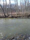 F?rstenas v?rfloden i Kenosha Wisconsin arkivbilder