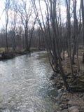 F?rstenas v?rfloden i Kenosha Wisconsin arkivfoto
