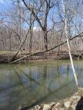 F?rstenas v?rfloden i Kenosha Wisconsin royaltyfri bild