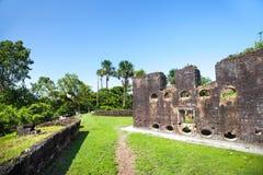 f?stning Tegelstenv?ggar av Fort Zeelandia, Guyana royaltyfri bild