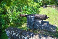 f?stning Vapen av Fort Zeelandia, Guyana Fortet Sj?lland lokaliseras p? ?n av den Essequibo floden Fortet byggdes i 1743 royaltyfria foton