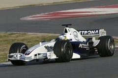 F1 2006 - BMW Sauber van Heidfeld van de Inkeping Royalty-vrije Stock Foto's