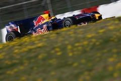 F1 2009 - Teken Webber Red Bull Stock Afbeelding