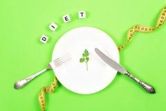 Faça dieta, pese a perda, comer saudável, conceito da aptidão Parcela pequena de alimento na placa grande Folha pequena da salada imagens de stock