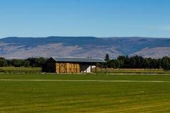 Faça feno o celeiro em um campo verde da grama fresca com montes Foto de Stock