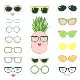 Faça-o você mesmo abacaxi nos vidros ilustração stock