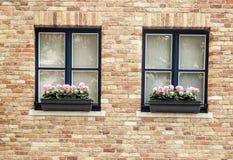 Façade avec la fenêtre Photographie stock libre de droits